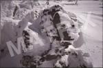 VW-0001_樹氷(エビの尻尾)